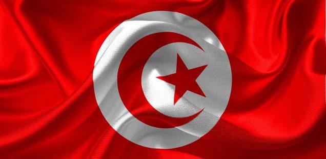 Los nuevos otomanos