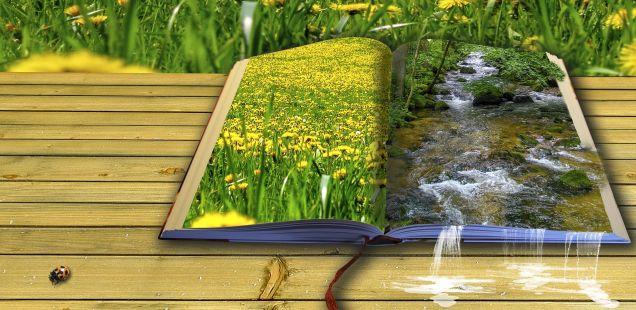 Recomendaciones literarias para el verano del equipo de CJ (II)